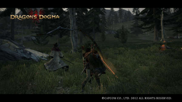 Dragon's Dogma Screen Shot _14.jpg