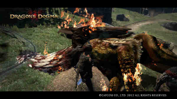 Dragon's Dogma Screen Shot _6.jpg